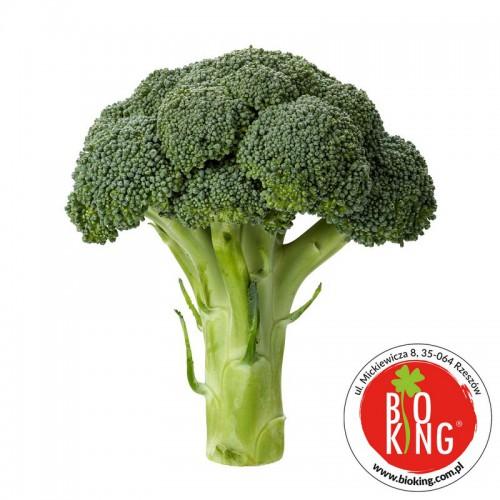 Brokuł ekologiczny bio Barwy Zdrowia