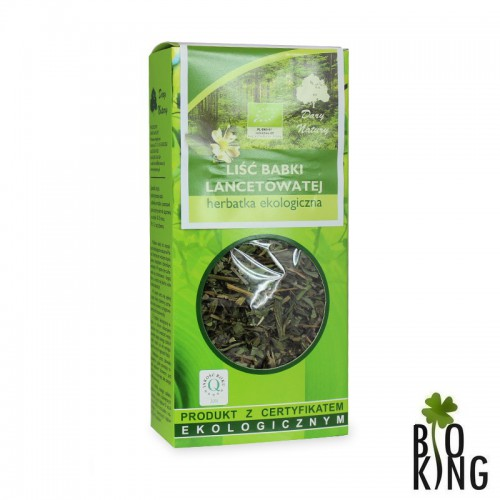 Herbata babka lancetowata - liściasta