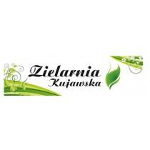 Zielarnia Kujawska - Polska