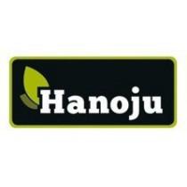 Hanoju - Polska