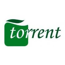 Torrent - Hiszpania (Andaluzja)