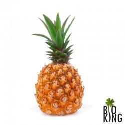 Ananas świeży bio ekologiczny Bio Planet