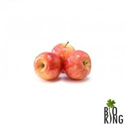 Jabłka Gala ekologiczne Bio Planet