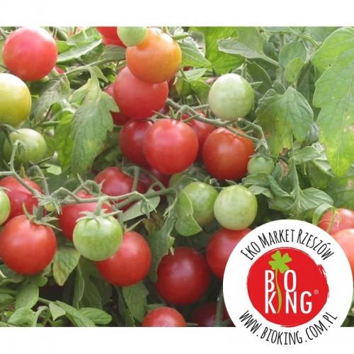 Pomidor winogronowy Rose Quartz - rozsada