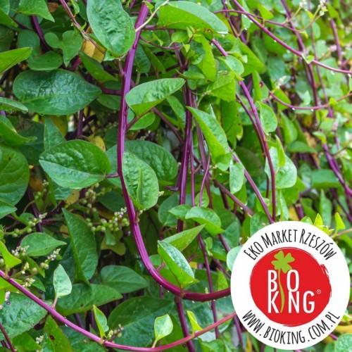Szpinak pnący letni Malabar - rozsada