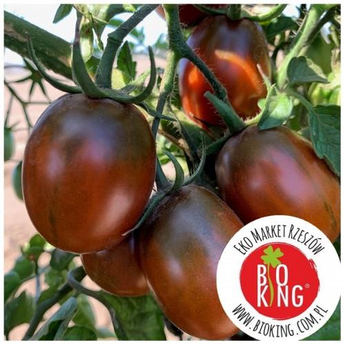 Pomidor śliwkowy Black Plum - rozsada