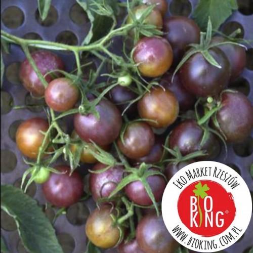 Pomidor winogronowy Black Cherry - rozsada