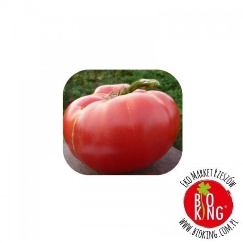 Pomidor malinowy duży bio Marian Wójtowicz