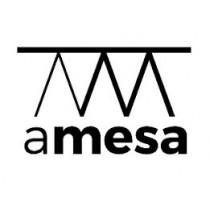 Amesa - Polska