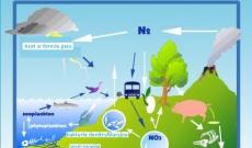 Bakterie glebowe – początek łańcucha życia.